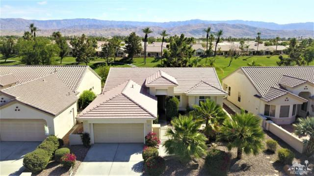 39527 Manorgate Road, Palm Desert, CA 92211 (MLS #219016529) :: Brad Schmett Real Estate Group