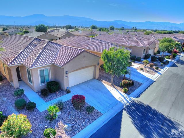 81641 Avenida De Baile, Indio, CA 92203 (MLS #219016777) :: The Jelmberg Team