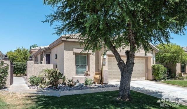 29322 W Laguna Drive, Cathedral City, CA 92234 (MLS #219017619) :: Brad Schmett Real Estate Group