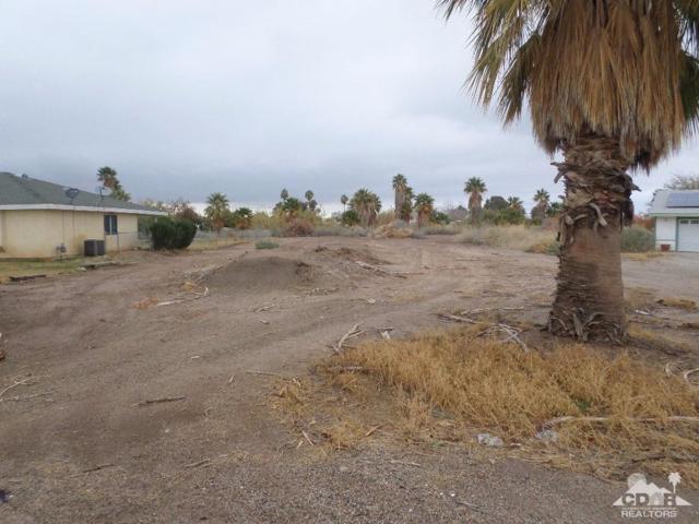 18214 Riviera Drive, Blythe, CA 92225 (MLS #219017699) :: The John Jay Group - Bennion Deville Homes