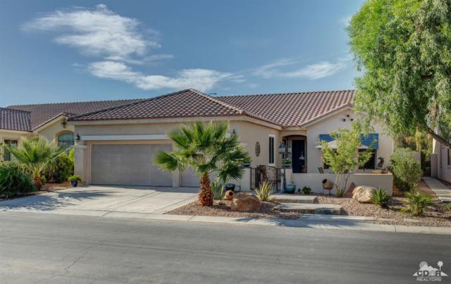 80588 Avenida Santa Marta, Indio, CA 92203 (MLS #219018299) :: The Jelmberg Team