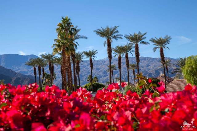 78995 Dry Creek Rd Road, La Quinta, CA 92253 (MLS #219019187) :: Brad Schmett Real Estate Group