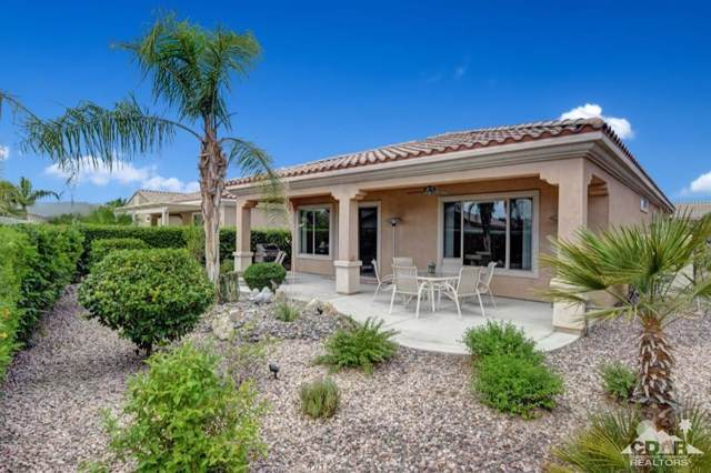 41446 Calle Los Arcos, Indio, CA 92203 (MLS #219019465) :: Brad Schmett Real Estate Group