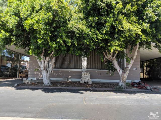 80000 Avenue 48 #217, Indio, CA 92201 (MLS #219019473) :: The John Jay Group - Bennion Deville Homes
