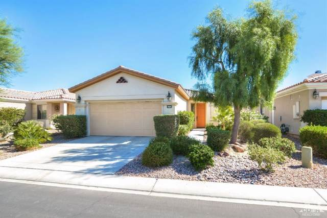 80770 Camino Los Campos, Indio, CA 92203 (MLS #219019535) :: Brad Schmett Real Estate Group