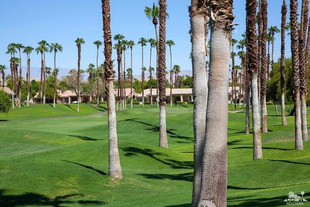 38829 Lobelia Circle, Palm Desert, CA 92211 (MLS #219022281) :: The Jelmberg Team