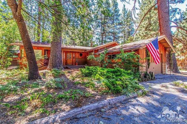 54017 River Co Playground Road, Idyllwild, CA 92549 (MLS #219022637) :: Deirdre Coit and Associates