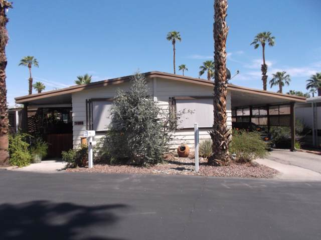 264 Wolf, Cathedral City, CA 92234 (MLS #219030195) :: Deirdre Coit and Associates