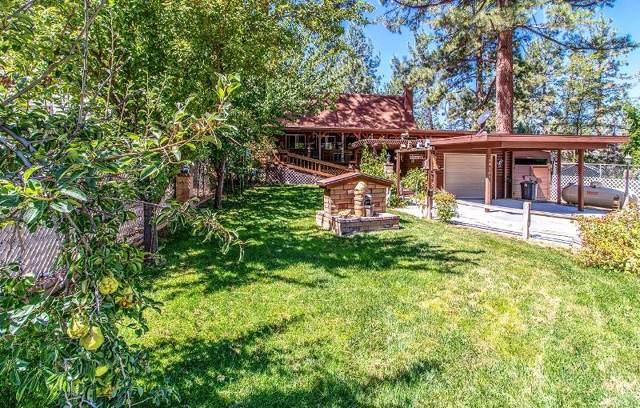 59381 Donna Mae Place, Mountain Center, CA 92561 (MLS #219030412) :: Mark Wise | Bennion Deville Homes