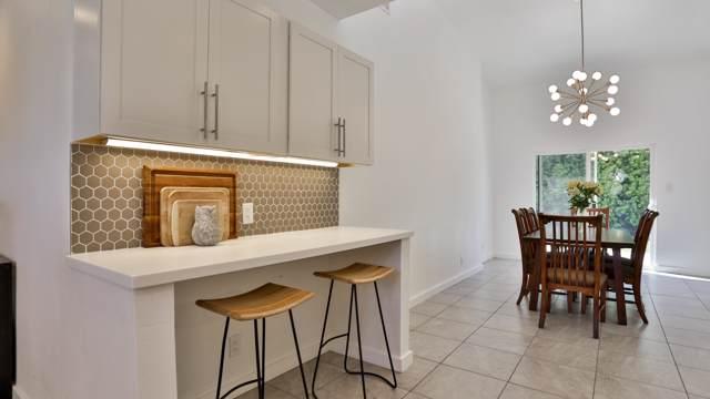 4345 E Camino Parocela, Palm Springs, CA 92264 (MLS #219030729) :: Brad Schmett Real Estate Group