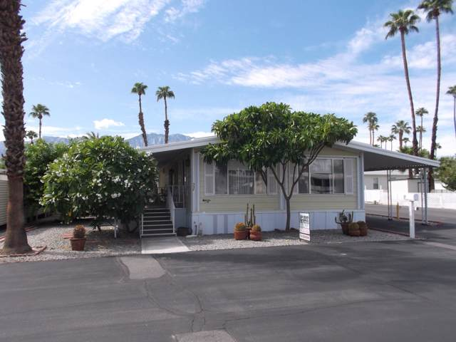 337 Coyote, Cathedral City, CA 92234 (MLS #219030783) :: The Sandi Phillips Team