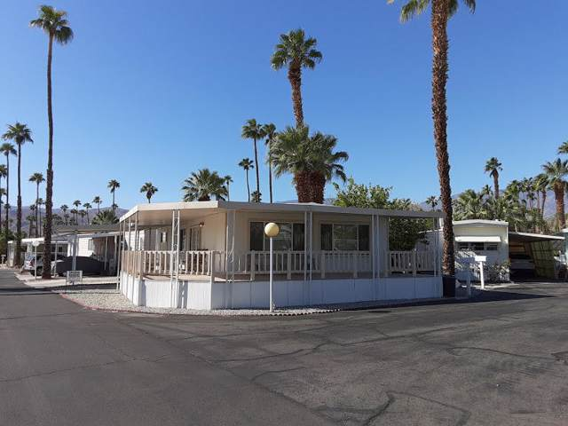 141 Coyote, Cathedral City, CA 92234 (MLS #219030884) :: The Sandi Phillips Team