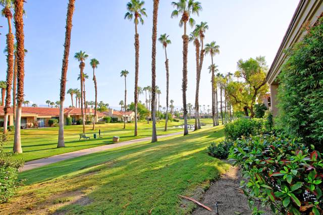 76502 Begonia Lane, Palm Desert, CA 92211 (MLS #219030969) :: The Sandi Phillips Team