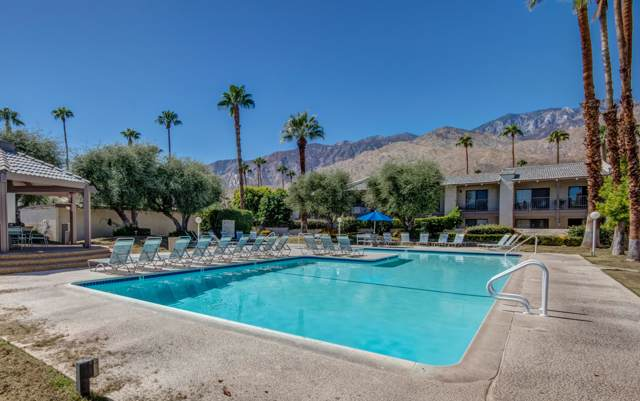 1150 E Palm Canyon Drive, Palm Springs, CA 92264 (MLS #219031470) :: The John Jay Group - Bennion Deville Homes