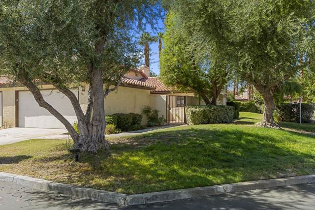 207 Lakecrest Lane, Palm Desert, CA 92260 (MLS #219031611) :: Brad Schmett Real Estate Group