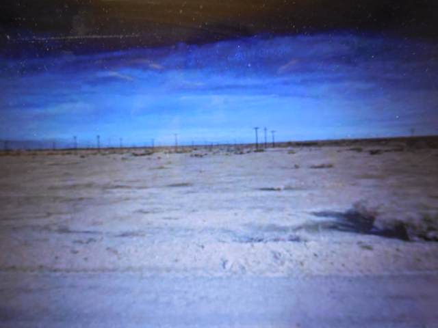 2057 Desert Way, Thermal, CA 92274 (MLS #219031709) :: Brad Schmett Real Estate Group