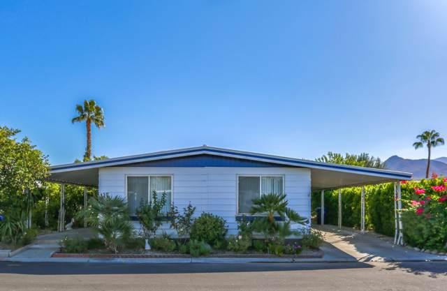 147 Vista De Oeste, Palm Springs, CA 92264 (MLS #219031875) :: The Sandi Phillips Team