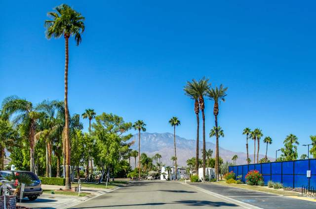 69411 Ramon Road #1133, Cathedral City, CA 92234 (#219033003) :: The Pratt Group