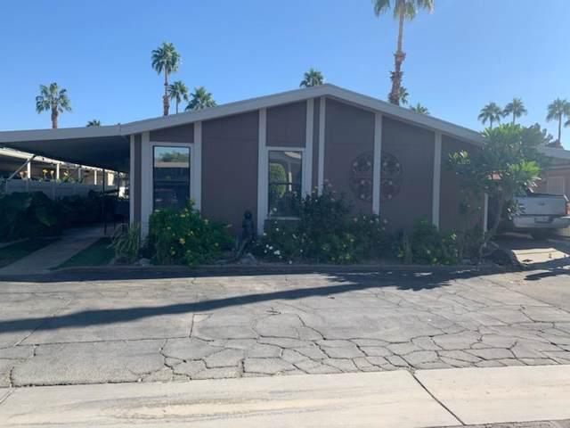 80000 Avenue 48 Avenue #277, Indio, CA 92201 (MLS #219033653) :: Brad Schmett Real Estate Group