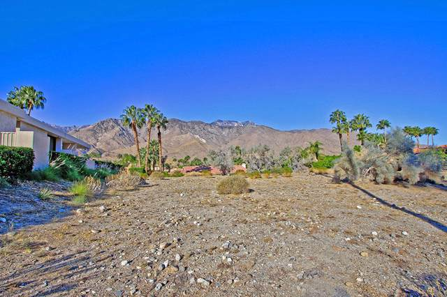 38641 E Bogert Trail, Palm Springs, CA 92264 (MLS #219033788) :: Zwemmer Realty Group