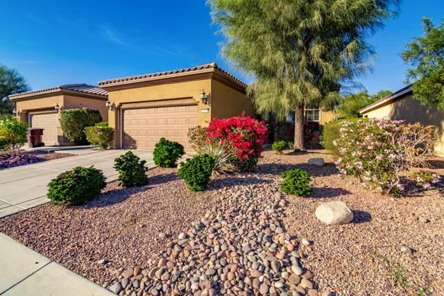 81088 Avenida Vidrio, Indio, CA 92203 (MLS #219033791) :: Brad Schmett Real Estate Group