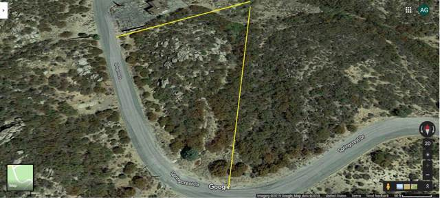 1 Springcrest Drive Drive, Mountain Center, CA 92561 (MLS #219034026) :: The John Jay Group - Bennion Deville Homes
