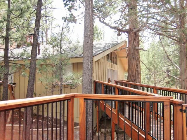445 Hillendale, Big Bear City, CA 92314 (MLS #219034040) :: Hacienda Agency Inc
