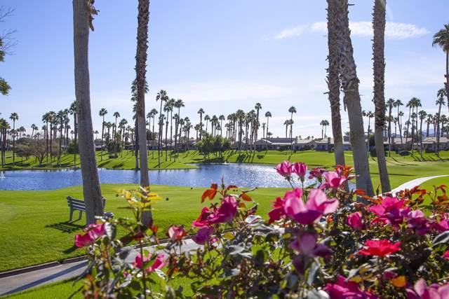 39686 Narcissus Way, Palm Desert, CA 92211 (MLS #219034212) :: Brad Schmett Real Estate Group