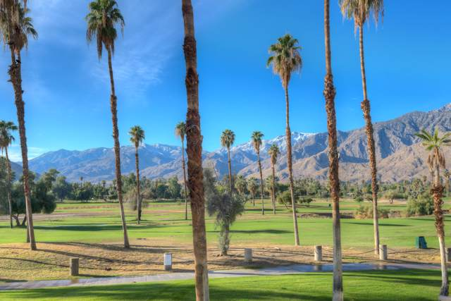 505 S Farrell Drive, Palm Springs, CA 92264 (MLS #219034828) :: Brad Schmett Real Estate Group