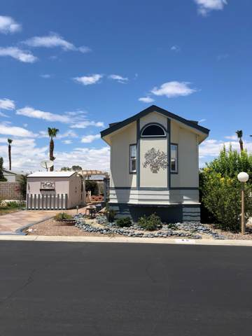81620 Ave 49 #45, Indio, CA 92201 (MLS #219034946) :: The Sandi Phillips Team