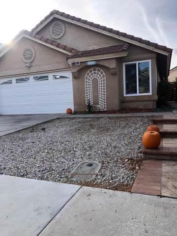 1502 Portrait Road, Perris, CA 92571 (MLS #219034983) :: Mark Wise | Bennion Deville Homes