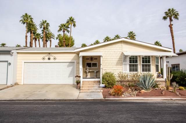 1091 Via Verde, Cathedral City, CA 92234 (MLS #219035081) :: Brad Schmett Real Estate Group