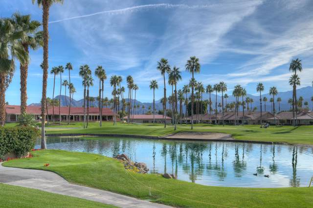 47 Joya Drive, Palm Desert, CA 92260 (MLS #219036336) :: Brad Schmett Real Estate Group