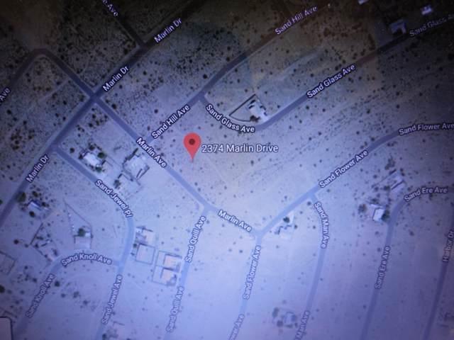2374 Marlin Drive, Thermal, CA 92274 (MLS #219036610) :: Brad Schmett Real Estate Group