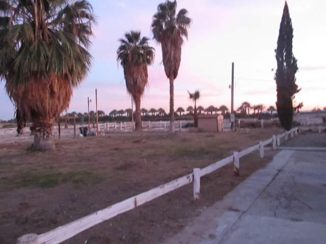 56255 Desert Cactus Drive, Thermal, CA 92274 (#219036616) :: The Pratt Group