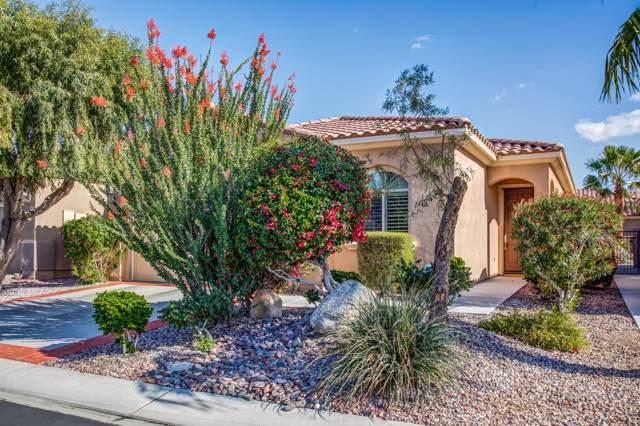 41466 Calle Servando, Indio, CA 92203 (MLS #219036627) :: Brad Schmett Real Estate Group