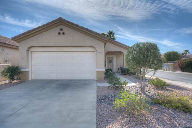 78641 Hampshire Avenue, Palm Desert, CA 92211 (MLS #219037078) :: Brad Schmett Real Estate Group