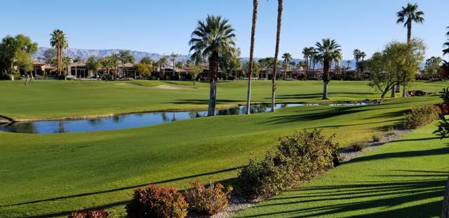 48650 Vista Estrella, La Quinta, CA 92253 (MLS #219037183) :: Brad Schmett Real Estate Group