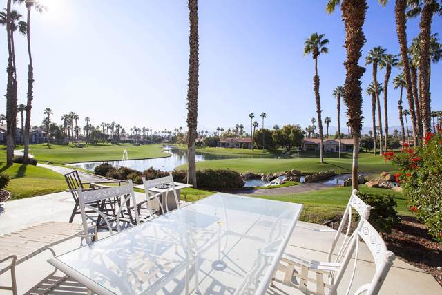 38107 Crocus Lane, Palm Desert, CA 92211 (MLS #219037210) :: Brad Schmett Real Estate Group