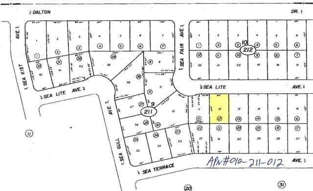 2515 Sea Lite Avenue, Salton City, CA 92275 (MLS #219038409) :: Mark Wise | Bennion Deville Homes