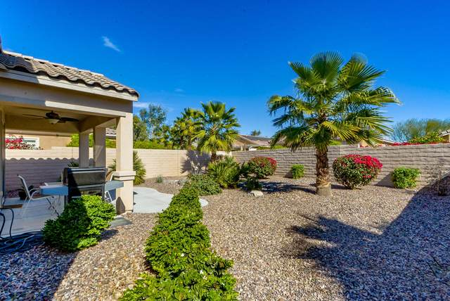 40074 Corte Refugio, Indio, CA 92203 (MLS #219038947) :: The Jelmberg Team