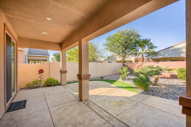 81664 Avenida Celaya, Indio, CA 92203 (MLS #219039032) :: The Jelmberg Team
