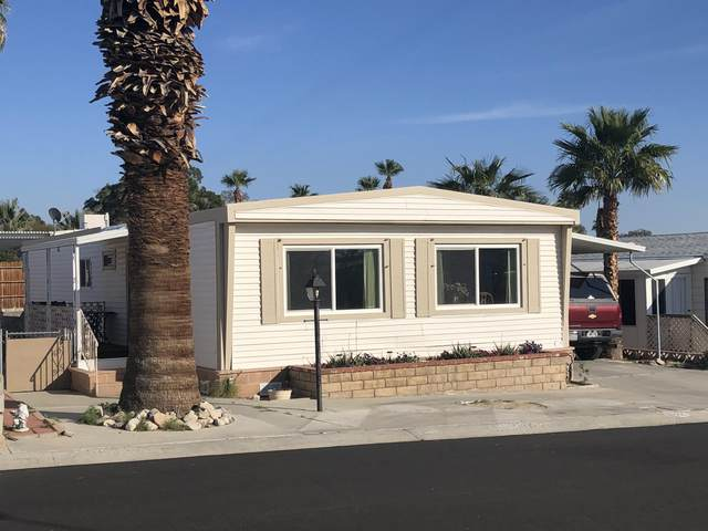 69250 Midpark Drive, Desert Hot Springs, CA 92241 (MLS #219039174) :: Mark Wise | Bennion Deville Homes