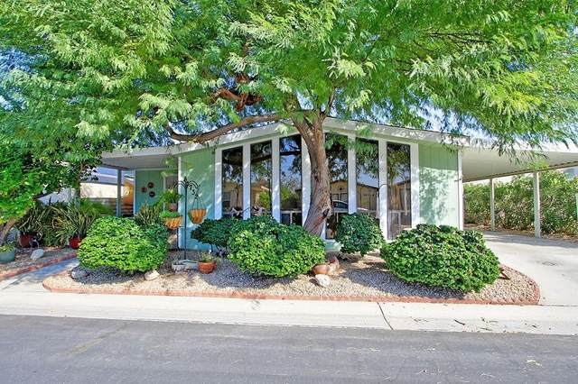81732 San Cristobal Avenue, Indio, CA 92201 (#219039426) :: The Pratt Group