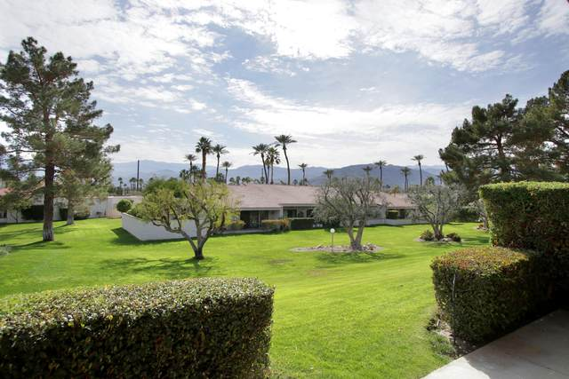 197 Winterhaven Circle, Palm Desert, CA 92260 (MLS #219039430) :: Brad Schmett Real Estate Group