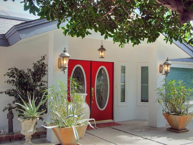 1524 S Calle Marcus, Palm Springs, CA 92264 (MLS #219039436) :: Mark Wise | Bennion Deville Homes