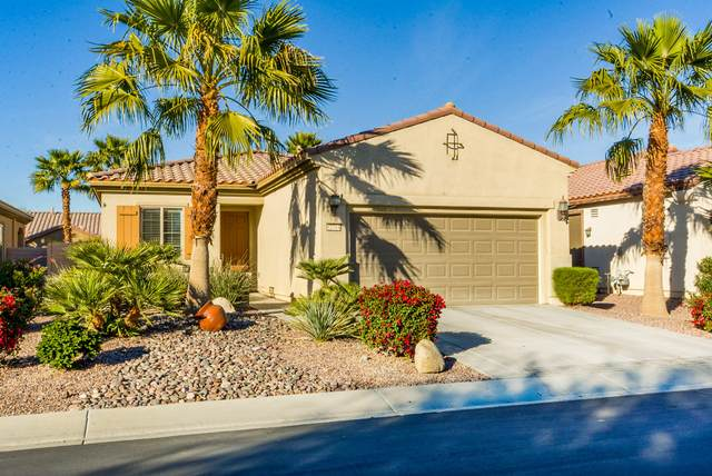 81064 Avenida Vidrio, Indio, CA 92203 (MLS #219039579) :: Brad Schmett Real Estate Group