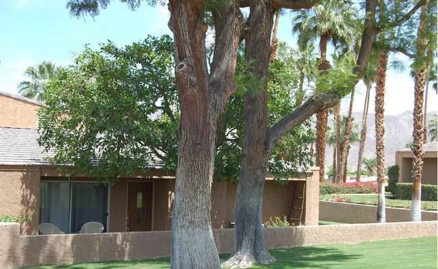 73401 Dalea Lane, Palm Desert, CA 92260 (#219039605) :: The Pratt Group