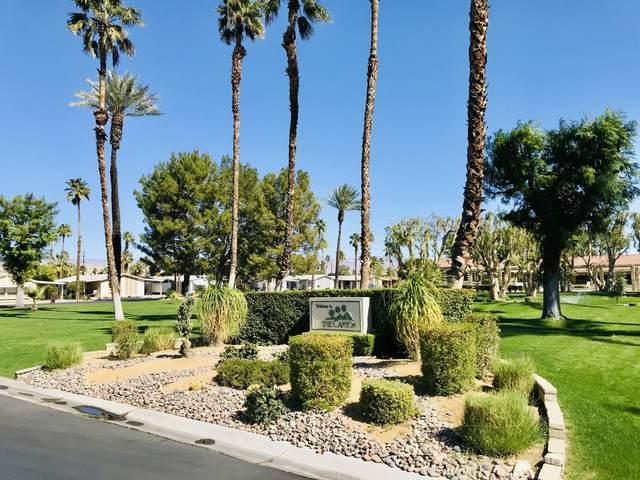 214 Settles Drive, Cathedral City, CA 92234 (MLS #219040167) :: Hacienda Agency Inc
