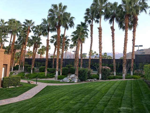 73483 Foxtail Lane, Palm Desert, CA 92260 (MLS #219040311) :: The Sandi Phillips Team